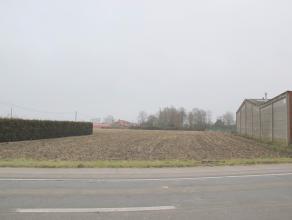 Mooi gelegen residentiële bouwgrond in Proven van 3.844m² totale grondopp. - dienstig voor open bebouwing - zonder bouwverplichting - vlotte