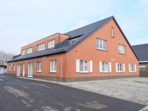 Dit rustiggelegen gelijkvloers appartement omvat een lichtrijke woonkamer met open keuken incl. elektrische kookplaat, dampkap, oven en frigo, berging