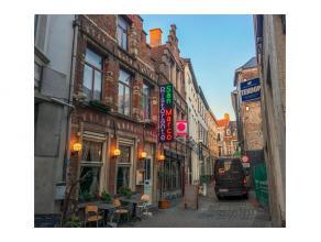 Deze handelswoning ligt in een zijstraat van Mageleinstraat Gent, het bevat: inkom met trappenhal en kelder. 3 communicerende ruimtes, keuken en wc-bl