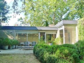 Drongen - Weegbreestraat 6: Te renoveren bungalow gelegen in doodlopende straat op prachtig stuk grond van 1039 m² met 100% privacy. Woning (115
