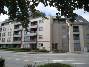 Appartement van 145m² met3 slaapkamers aan de ingang van hetstadspark.Zeer ruimeliving met terras vooraan, afzonderlijk toilet, volledig ingerich