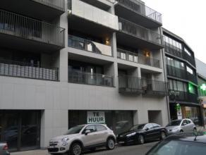 Recent appartement van 55m² opp, living met open ingerichte keuken, badkamer, berging, kelderberging, 1 slaapkamer, apart toilet, terras, algemen