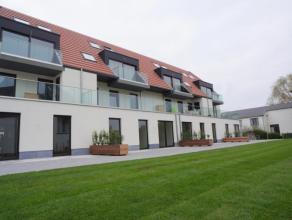 Res. De Luxe is gelegen aan het centrum van Aalter, op wandelafstand van het sportcentrum en scholen. Winkels en openbaar vervoer in de onmiddellijke