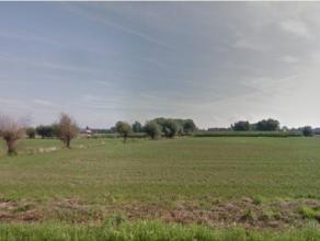 """Permanent Weiland van 9820m² in de wijk """"De Maet"""" vrij van pacht!Meer info tel. 0477/80 75 80"""