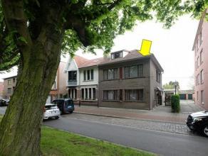 Grote woning met atelier goed gelegen op het rustig gedeelte van de Boekenberglei. Indeling woning: op het gelijkvloers is er een inkomhal, een grote