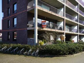 De residentie beschikt over een overdekte fietsenberging en vrije parkeerplaatsen waardoor je geen Garage of staanplaats dient aan te kopen. Dit ruim