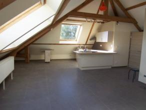 Appartement neuf aménagé style loft qui se compose d'un espace séjour, salle à manger, cuisine équipée, sall