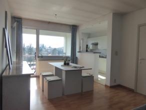 Gerenoveerd appartement op 2e verdieping in klein gebouw met gezellig terras.! Appartement met mogelijkheid voor KLEIN BESCHRIJF !Men komt het apparte