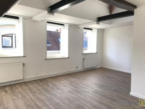 Gerenoveerd duplexappartement van maar liefst ca 168 m² in het hartje van Antwerpen. Gelegen in de Lange Koepoortstraat, op wandelafstand van de