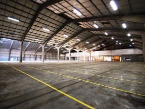 """InstapklareMAGAZIJNEN (3 laadkaden + 1 sectionaalpoort) en groot verhard terrein voor 20-tal parkings op industriezone """"Konijnenbos"""" te Gistel. Eventu"""