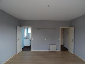 APPARTEMENT rénové avec  1 chambre, hall d'entrée, salle-de-bains, cuisine meublée, living, terrasse, vaste grenier pour r