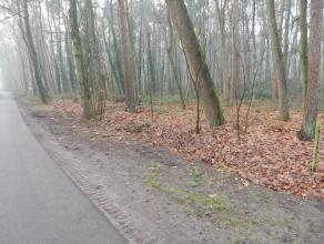 Mooi perceel bouwgrond aan verharde weg met een oppervlakte van 1.788 m², gelegen in woongebied met bosrijk karakter.