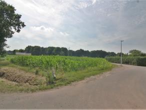 Rustig en in het groen gelegen bouwgrond geschikt voor open bebouwing. Mooie landelijke ligging en toch op korte afstand van het dorpscentrum. Hoekper