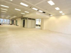 Entre Botanique et Parc, dans un bel immeuble, très spacieux espace bureau de +/- 572m² entièrement rénové. Compos&ea