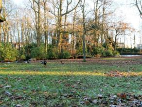 """Uniek landgoed """"Eendenhof"""" op ca 9.000m² grond op wandelafstand van Edegem centrum. Karaktervolle, eind 19de eeuwse herenwoning met schitterend p"""