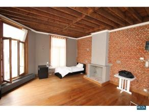 Prachtig instapklaar duplex/loft appartement. We betreden dit appartement via de trap die rechtstreeks uitkomt in de leefruimte en keuken, door de ope