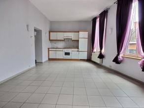 Lumineux appartement 1 ch situé au 2ème étage ds un bel immeuble sans ascenseur a/cave privative et emplacement de parking ext&ea
