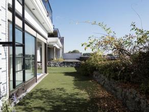 Deze ideaal gelegen kantoorruimte op de 1ste verdieping biedt heel wat mogelijkheden voor verschillende doeleinden. Kenmerkend aan de ruimtes zijn de