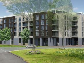 In het centrum van Dendermonde: ondergrondse, open autostaanplaatsen TE HUURU woont, werkt in het centrum en bent het zoeken naar een parkeerplaats en
