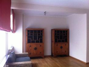 Héél ruim gelijkvloers appartement nabij Centrum Gent. Dit ruim appartement is gelegen op wandelafstand van het historisch centrum van G