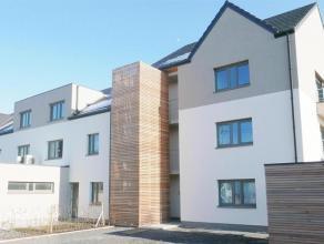 Maisons 2 ou 3 façades de 175m² (136m² + grenier 58m²) très lumineuses, jolie vue sur la campagne, belle terrasse plein S