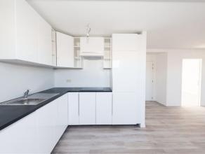 Dans maison de caractère rénovée ( 8m de façade) , agréable duplex proposé en 1ére occupation apr&egr