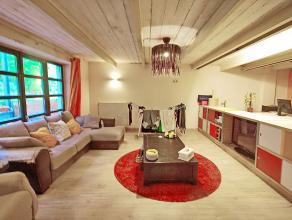 PANNENHUIS: Superbe Loft de 140m² avec terrasse, comprenant une chambre à coucher séparée, spacieuse salle-de-bains, u