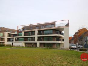 """De residentie """"New Large Park"""" geniet een groen karakter. Deze penthouse is het pareltje van dit project. Met een 360° terras kunt altijd van de z"""