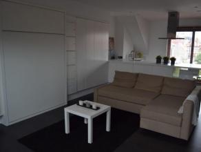 Gemeubelde studio op de 2de verdieping van een klein gebouw. Leefruimte (36 m) met ingebouwd opklapbed, salon, open volledig ingerichte keuken, douche