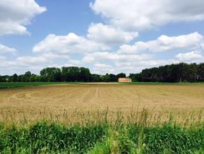 Landbouwgrond gelegen in agrarisch gebied met een oppervlakte van ca. 6200 m². Infoplicht; Geen vergunning, geen dagvaarding, geen voorkooprecht,