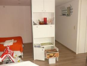 Grand studio avec vue sur le Berlaimont, env 43 m² tout confort, pièce principale de 25 m² avec coin cuisine, chambre sépar&ea