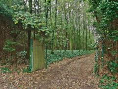 Rustig en goed gelegen hoeve op 6.5 ha grond. De woning omvat o.a. living met openhaard, landelijke keuken, bijkeuken, berging (wasplaats), vier slaap