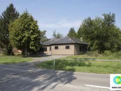 Goed bereikbare bungalow met tuin en garage. De woning werd volledig gerenoveerd en is voorzien van alle comfort. De hoge ramen zorgen voor een mooie