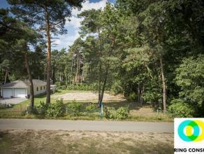 Goed gelegen bouwgrond op grondgebied Bonheiden, maar dichter bij Keerbergen en Rijmenam gelegen. In de straat is amper verkeer, maar u bent snel op d