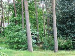 Schitterend gelegen bouwgrond met een oppervlakte van ca.20 are. Residentiële, heel rustige ligging in bosrijke omgeving op enkele minuten van d