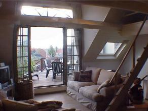 SIMONIS//BASILIQUE Superbe appartement meublé 85m² à proximité du métro et du centre: salon (40m²), cuisine supe