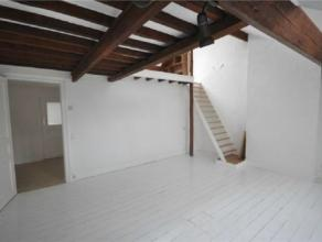 MEISER// SCHAERBEEK// Magnifique Duplex comprenant: un hall d'entree, un grand salon ( +/-28m²), une cuisine équipée ( +/-12m²