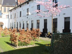 Deze woning is gelegen in het centrum van Gent in een aantrekkelijk woonerf. De woning omvat een keuken - eetruimte, een badkamer met douche, een salo