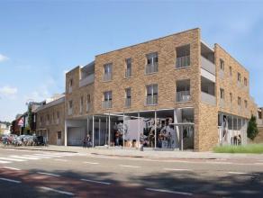 Residentie Drieshof bestaat uit 16 wooneenheden (zowel appartementen als woningen van 1 tem 4 slpk) en 1 commerciële ruimte gelegen rond de