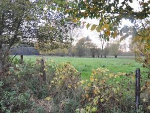 Landbouwgronden gelegen te Nijverseel. Totale oppervlakte van 54are10 centiaren. Centraal gelegen, bereikbaar via landweg.