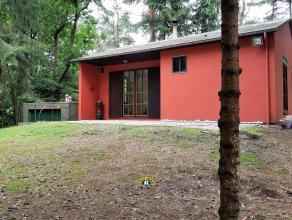 Gelijkvloerse woning op een perceel van ca 2.962m² te Essen-Wildert. Deze woning is ingericht met een gezellige woonkamer en open keuken, 2 slaap