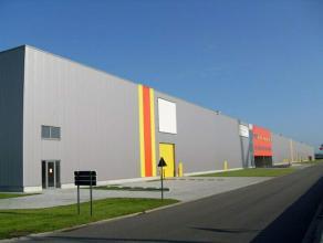 Warehouse te huur Nieuwbouw magazijn gelegen in de transportzone Meer langsheen de E19 Antwerpen-Breda-Rotterdam. Beschikbare magazijnruimte(hal E) be