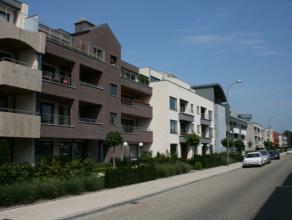 Duplex appartement met een totale opp. van 172m², semi-casco afgewerkt. Indeling op de gelijkvloerse verdieping: woonkamer, keuken, 2 badkamers m