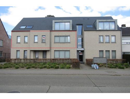Appartement te huur in herenthout 695 fmdy4 heylen vastgoed zimmo - Appartement muur ...