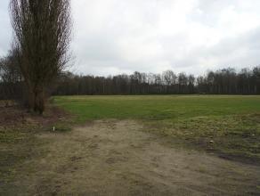 Exclusieve projectgrond van bijna 2 hectare op een zeer rustige ligging, op de grens tussen Kessel en Emblem. Mogelijk tot het oprichten van een proj