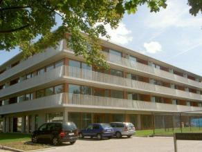 Mooi appartement op de eerste verdieping met twee slaapkamers, badkamer en douchekamer. Terras van 10 m² gelegen aan de westkant. EPC: 87 kWh/m&s
