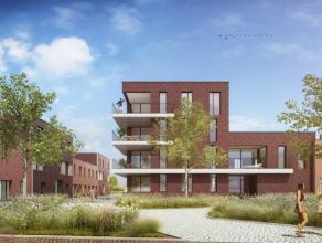Nieuw te bouwen moderne rijwoning met een bewoonbare oppervlakte van 122,4 m²  met oa 3 slaapkamers, terras en stadstuin in Fase B van Amandelwil