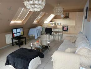 Zeer knus en gezelllig appartement met 1 slaapkamer en terras te Arendonk. Huurprijs: 485 euro + 20 euro servicekosten per maand. Onmiddellijk beschik
