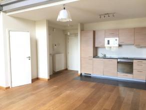 Près de la place Meiser, avec une très belle vue sur la Place Dailly, bel appartement duplex, spacieux et lumineux living, cuisine ouver