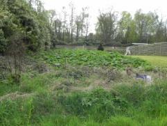 Bouwgrond met een oppervlakte van 770 m², 20 m breed. De tuin is zuidgericht. U mag 12 m breed bouwen.
